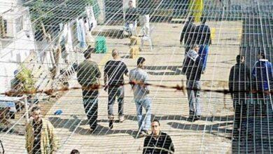تصویر شمار اسرای فلسطینی مبتلا به کرونا به ۲۴۹ نفر رسید