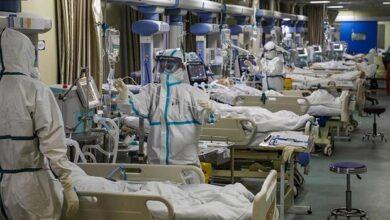 تصویر ابتلای ۸۵۶۰۸ نفر به کرونا ویروس در شیراز