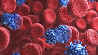 تصویر سرطان بیش از ۱۰ میلیون نفر را در جهان به کام مرگ فرستاد