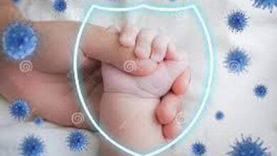 تصویر انتقال آنتی بادی از مادر به نوزاد با تزریق واکسن کووید ۱۹
