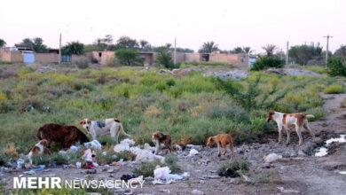 تصویر لزوم پاسخگویی مسئولان در قبال ترکفعلها در خرمشهر